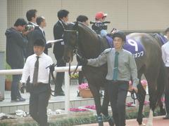 20180401 阪神11R 大阪杯(G1) トリオンフ 02