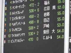 20150621 東京10R 芦ノ湖特別 マッサビエル 02