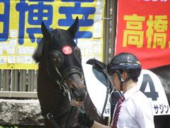 20190504 東京4R 3歳未勝利 ショウナンサジン 06