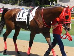20170520 東京2R 3歳未勝利 パイオニアワーク 09
