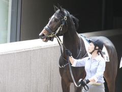 20160514 東京5R 3歳牝馬未勝利 ツボミ 02