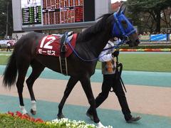 20151107 東京11R 京王杯2歳S(G2) モーゼス 08