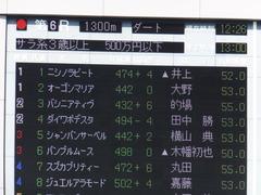 20151012 東京6R 3歳上500万下 バシニアティヴ 01