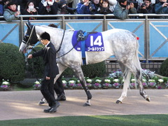 20131222 有馬記念 ゴールドシップ 01