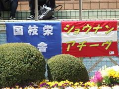 20180408 中山11R 春雷S(OP) ショウナンアチーヴ 01