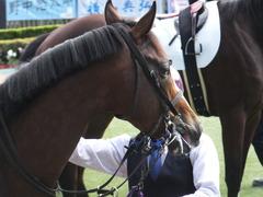 20171126 東京4R 2歳メイクデビュー エイカイオリンピア 15