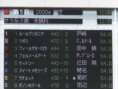 20160514 東京5R 3歳牝馬未勝利 ツボミ 01