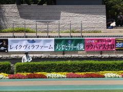 20150530 東京7R 4歳上500万下 ツクバアスナロ 01