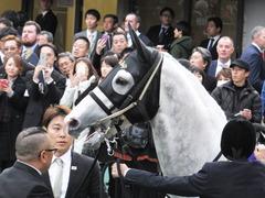 20151129 東京11R ジャパンカップ(G1) 10