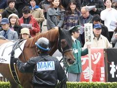 20160221 東京6R 3歳500万下 アートラヴァー 10