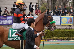 20200215 東京11R クイーンC(G3) 3歳牝馬OP ホウオウピースフル 14
