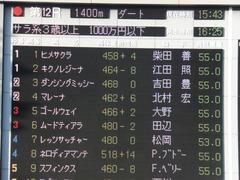 20141025 東京12R ゴールウェイ 01