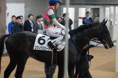 20200216 東京6R 3歳1勝クラス コウソクスピード 23
