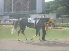 20120519 東京 1000万下のツボネちゃん