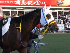 20161224 中山12R (500) トーセンカナロア 06