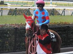 20170211 東京9R テレビ山梨杯(牝1000) レーヌドブリエ 23