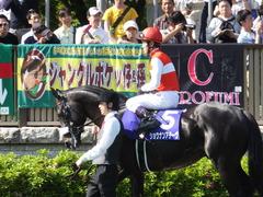 20140511 東京11R NHKマイルカップ(G1)ショウナンアチーヴ10