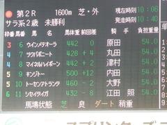20180923 中山2R 2歳未勝利 マイネルハイボーン 01