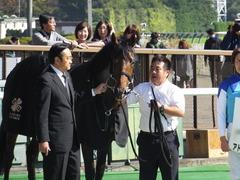 20161105 東京4R 2歳未勝利 アドマイヤシナイ 23
