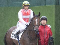20170917 中山5R 2歳牝馬メイクデビュー ショウナンアーデン 12