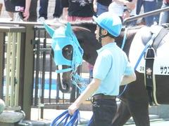 20150517 東京3R 3歳未勝利 サウンドアラムシャ 08
