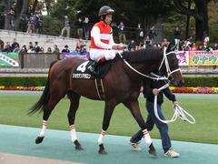 20151031 東京10R 赤富士S ショウナンアポロン 15