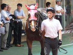 20160710 中京10R 木曽川特別(1000) ビップレボルシオン 10