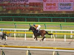 20140525 東京12R 丹沢S ユーロビート 13