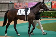 20191019 東京2R 2歳牝馬未勝利 バイカル 02