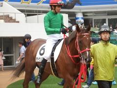 20180929 中山5R 2歳牝馬メイクデビュー オトナノジジョウ 18