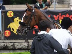 20170625 東京1R 3歳牝馬未勝利 プンメリン 18