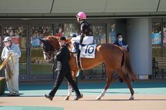 20200223 東京8R 4歳上1勝クラス クラサーヴィツァ 18