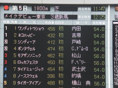 20150222 東京5R 3歳メイクデビュー シンディーア 14