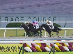 20151121京都2R 2歳未勝利 メイショウノボサン 11