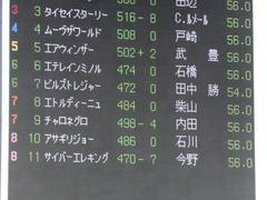20170212 東京11R 共同通信杯(G3) ビルズトレジャー 02