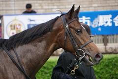 20191019 東京2R 2歳牝馬未勝利 バイカル 06