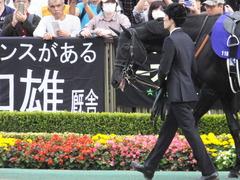 20141102 東京11R 天皇賞(秋) サトノノブレス 02