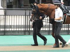 20150627 東京11R 夏至S ランドマーキュリー 02
