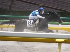 20160612 東京3R 3歳未勝利 ステイザベスト 14