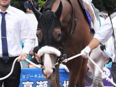 20140915 大井11R 東京記念 ユーロビート 11