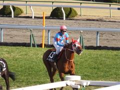 20170114 京都10R 北大路特別 4歳上牝馬1000万下 レーヌドブリエ 22