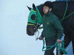 20180114 中山2R 3歳未勝利 アイコンタクト 05
