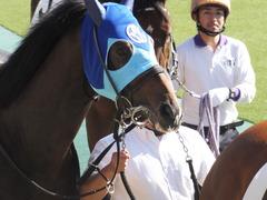 20161105 東京4R 2歳未勝利 アドマイヤシナイ 09