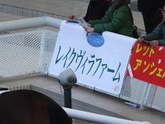 20170225 阪神4R 3歳未勝利 サテンドール 01