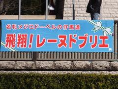 20170211 東京9R テレビ山梨杯(牝1000) レーヌドブリエ 01