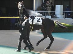 20141122 東京3R コスモポッポ 05
