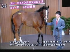 JRAブリーズアップセール 34 スリーダイメンションズ 02