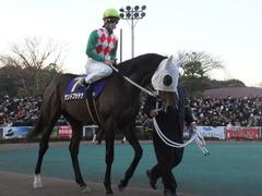 20161229 大井10R 東京大賞典(G1) サンドプラチナ 19