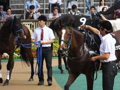 20161008 東京9R 山中湖特別(牝1000) ツクバアスナロ 11