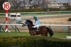 20200125 中山10R 東雲賞(3勝) アドマイヤシナイ 19